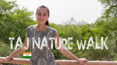 Taj Nature Walk | Taj Mahal | INDIA | WORLD TRAVEL